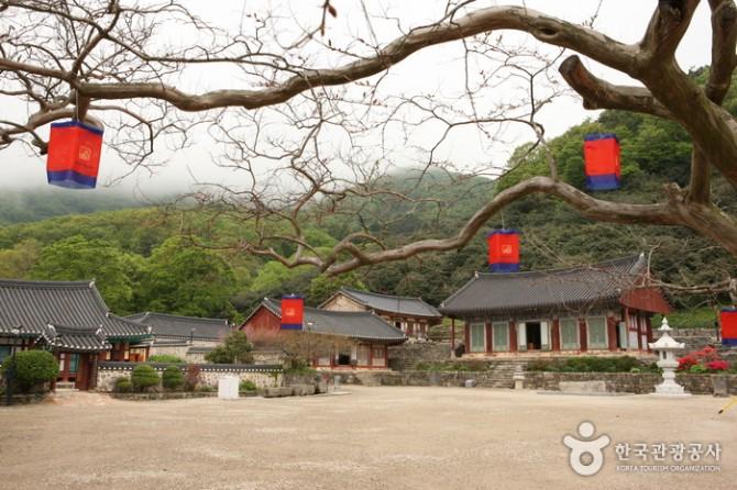 한국관광공사 제공